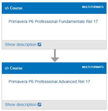 PRIMAVERA P6 Learning path